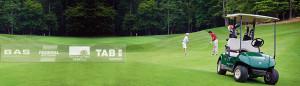 golf arabası akü